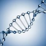 Can Exposure to Toxins Change Your DNA?